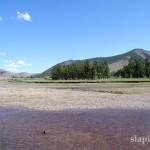 mongolia_lato_2004_19_wm