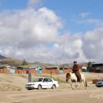 mongolia_lato_2004_20_wm