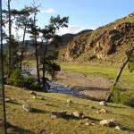 mongolia_lato_2004_22_wm