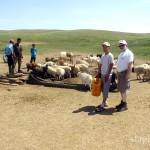 mongolia_lato_2004_37_wm