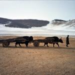 mongolia_zima_2006_10