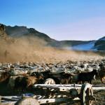 mongolia_zima_2006_34
