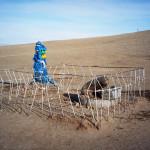 mongolia_zima_2006_50